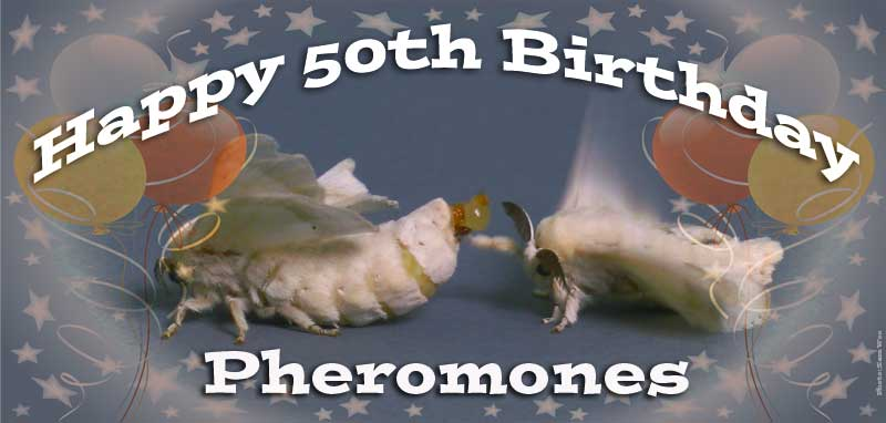 50th Birthday of Pheromones